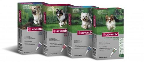 prodotti veterinari carmagnola